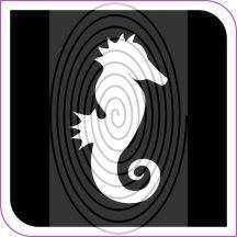 Tengericsikó  (css0012_5)