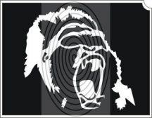 Orángután fej (css_orias_0010)