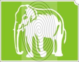 Elefánt (css_orias_0016)