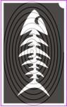 Hal csontváz (csss0028)