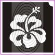 Hibiszkusz virág (csss0030)