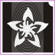 Csillag virág (csss0056)