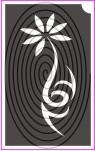 Clematis virág (csss0075)
