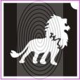 Üvöltő oroszlán (csss0084)