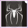 Kaszáspók (csss0092)