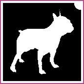 Kutya (csss0098)