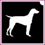 Kutya  (csss0128)