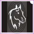 Ló fej (csss0167)