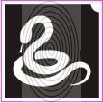 Kígyó (csss0224)