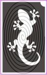 Gekko a falon (csss0232)