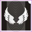 Angyal szárny (csss0235)