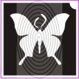 Pillangó No08 (csss0236)