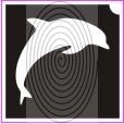 Játékos delfin (csss0238)