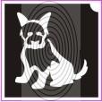 Juhász kutya (csss0246)