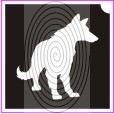 Németjuhász kutya (csss0261)