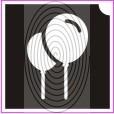Léggömbök (csss0295)