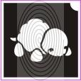 Mocsári teknős (csss0309)