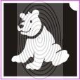 Örvös maci (csss0311)