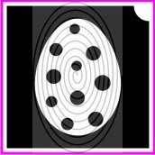 Pöttyös tojás (csss0440)