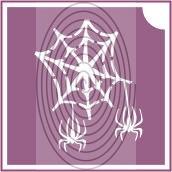 Pókháló pókokkal 2 (csss0495)
