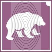 Medve  (csss0512)