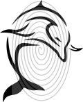 Delfin 2. - falmatrica