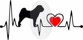 Shar Pei EKG (2 színű) - falmatrica