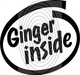 Ginger inside - autómatrica, autódekor