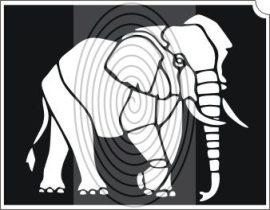 Elefánt (css_orias_0009)