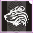 Tigris (csss0034)