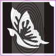 Pillangó No01 (csss0051)