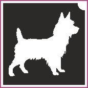 Kutya (csss0078)