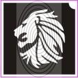 Hím oroszlán (csss0085)