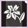 Láng virág (csss0103)
