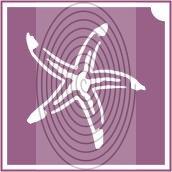 Tengeri csillag (csss0525)