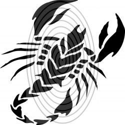 Skorpió 1. - falmatrica