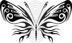 Pillangó 1. - falmatrica