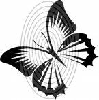 Pillangó 2. - falmatrica